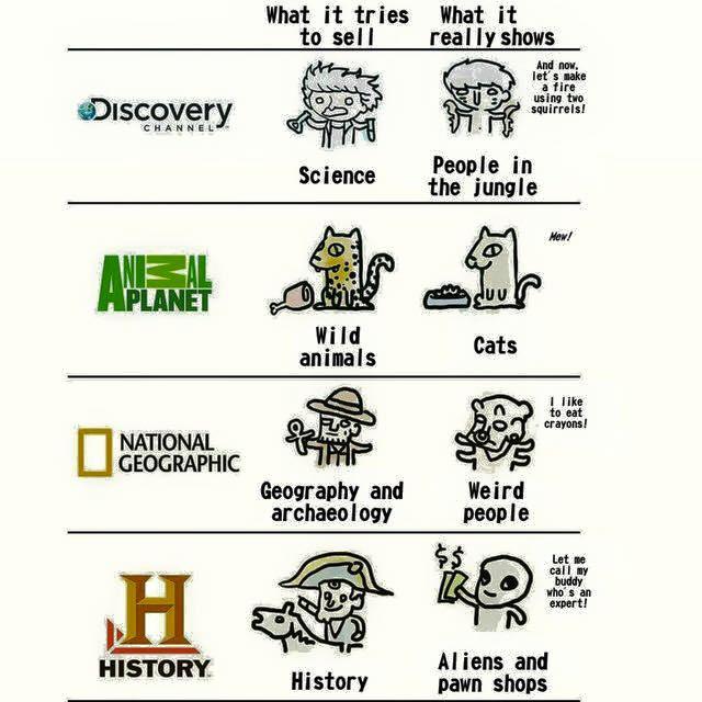 tak obecnie wygl�daj� programy na discovery wykoppl